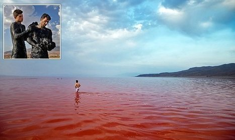 Iranian salt lake that turned blood red overnight could be saved | Conformable Contacts | Scoop.it