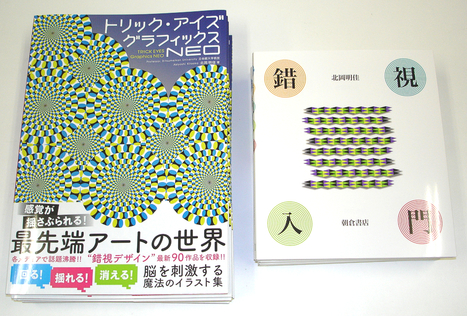 Akiyoshi's illusion pages | Sharing Technology for Teachers | Scoop.it