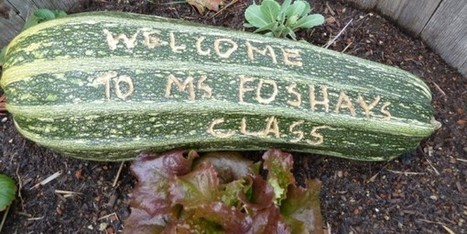 Making Garden Signs | School Gardening Resources | Scoop.it