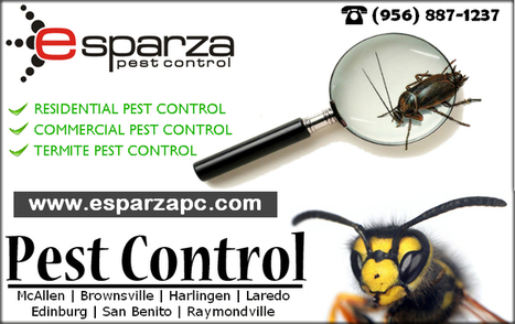 Hiring a Pest Control Service in Brownsville TX | Esparza Pest Control | Scoop.it