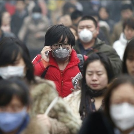 "Quartz : ""Watson 