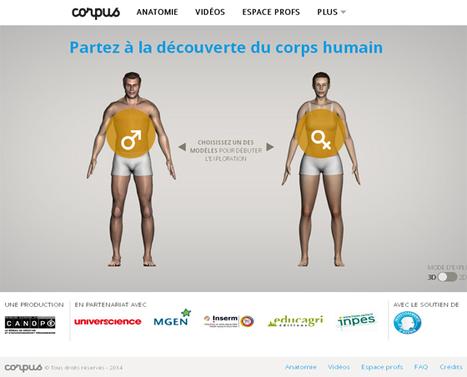 CORPUS, la découverte du corps humain. Grâce à une interface 3D, plus de 100 vidéos #canopé | Aller plus loin | Scoop.it