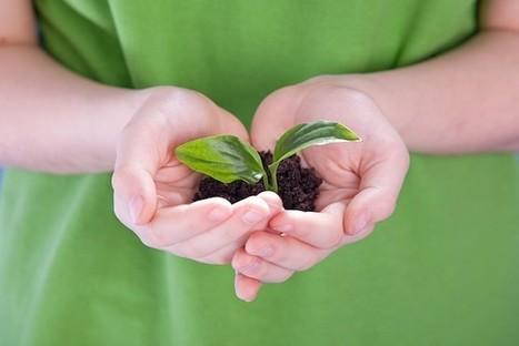 America's Coolest Green Schools | Green & Healthy Schools Wisconsin | Scoop.it