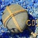 http://bit.ly/1PawQL0 - Linkis.com   que faire au CDI?   Scoop.it