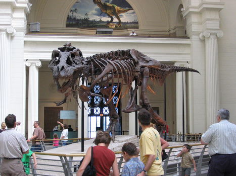 10 Reasons to Visit a Museum | Museus | Scoop.it