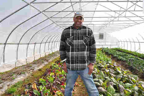 Urban Farmers Say It's Time They Got Their Own Research Farms | Haak's APHG | Scoop.it