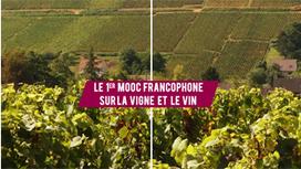 [MOOC] Open Wine University - Université de la vigne et du vin pour tous | Professionnalisation : les outils | Scoop.it