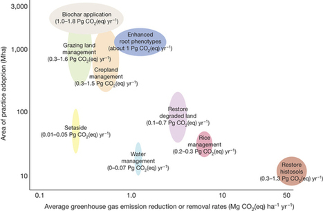 Climate-smart soils : Nature : Nature Publishing Group | plant cell genetics | Scoop.it