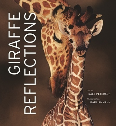 Giraffe Reflections - New Scientist | KAP-BuysE | Scoop.it