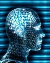 """Neuroscienze, mente e cervello i """"rebus"""" ancora da risolvere   Neuroscienze e Psicologia   Scoop.it"""