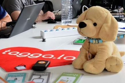Pronti per il futuro? Quando la tecnologia aiuta a ritrovare il cane   Chic4Dog Care   Scoop.it