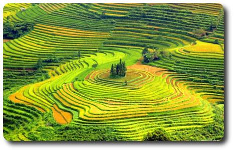 Sapa in Viet Nam   Hoi An ancient Town in Viet Nam   Scoop.it