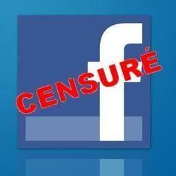 En Egypte, Facebook désormais sous haute surveillance | Égypt-actus | Scoop.it
