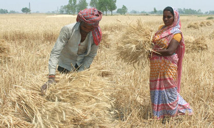 USDA Invests in Global Food Security | Food Security | Scoop.it