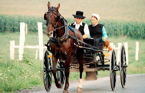 33 Facts About The Amish You Need to Know | MOVIES VIDEOS & PICS | Scoop.it