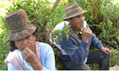 Bolivia enshrines natural world's rights with equal status for Mother Earth   hotchpotch   Scoop.it