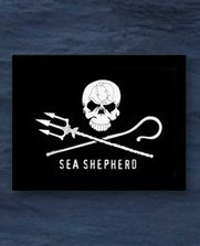 Sea Shepherd Shop | Via @VidarOceans Protecting the Oceans | Scoop.it