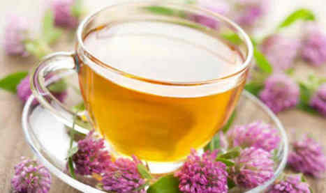 Relieve Your Anxiety With Valerian Tea | ForHealthBenefits | Scoop.it