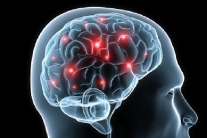 Western diet may cause brain impairment and neurodegenerative conditions, say researchers | Pineal Cysts | Scoop.it