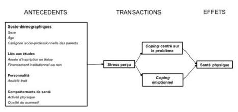 Stress, stratégies de coping et santé physique chez les chercheurs en début de carrière | Enseignement Supérieur et Recherche en France | Scoop.it