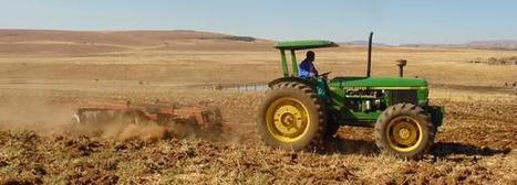Africa Green Media sur Twitter | Climate Smart Agriculture | Scoop.it