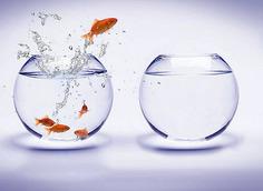 Comment l'innovation est étouffée par ceux qui la défendent | Services publics de demain | Scoop.it