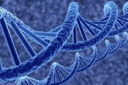 Celgene to Use Cypher Genomics' Data Analytics in Drug Development   Pharma_News   Scoop.it
