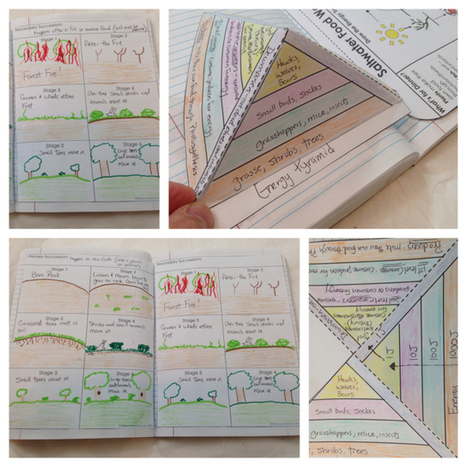 Guide To Using Interactive Notebooks in the Science Classroom | Special Science Classroom | Scoop.it