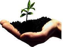 Business Model versus Business Plan - Aider les entrepreneurs en ... | small business related | Scoop.it