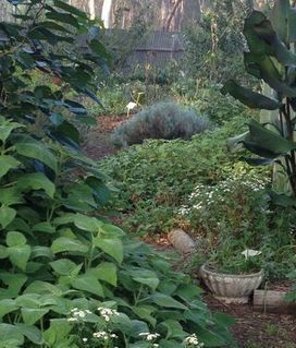 Open Gardens 16-17 November 2013 - ABC Online (blog)   Wellington Aquaponics   Scoop.it