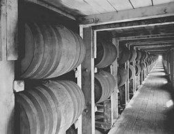 Prohibition: Roots of Prohibition | PBS | Revolution Inquiry | Scoop.it