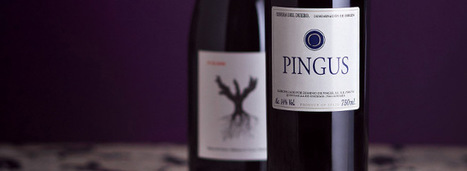 Vega Sicilia, L'Ermita, Pingus...The Most Expensive Wines in Spain | Vitabella Wine Daily Gossip | Scoop.it