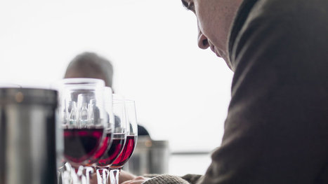 Should Wine Critics allow their personal preferences to color their critical views? | Vitabella Wine Daily Gossip | Scoop.it