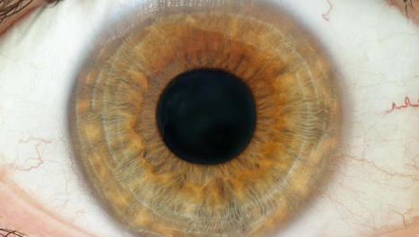 This Six-Second Eye Scan Can Tell You If You're Going To Get Diabetes | Business News | Scoop.it