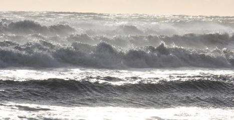 Energies marines : la facture à payer sera-t-elle lourde ? | Energies Actu | EMR | Scoop.it