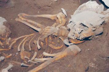 Les premiers hommes à Cuba depuis 8000 à 10 000 ans | El Watan (Algérie) | Kiosque du monde : Amériques | Scoop.it