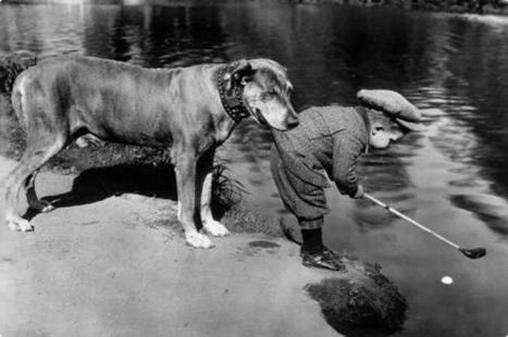 Twitter / HistoricalPics: A dog holds onto a little boy ... | Dog Grooming | Scoop.it