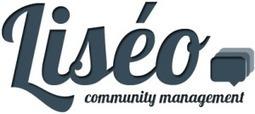 Le Calcul du ROI sur les Réseaux Sociaux | Liséo Community Management | Médias sociaux d'Alice | Scoop.it