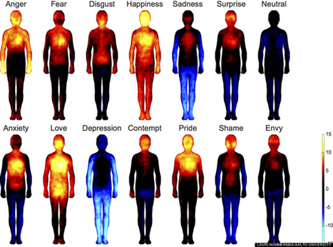 New Research: What Can Emotions Tell You About Your Body? | eCellulitis | All About Health & Beauty | Scoop.it