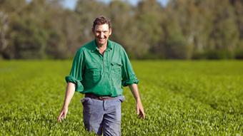 Gardening Australia - Tea Change | Year 8 Economics and Business: Exporting to Asia | Scoop.it