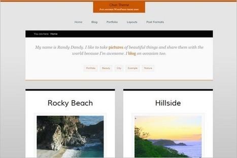 Top 20 Free WordPress Themes January 2013 - WP Daily Themes | Free & Premium WordPress Themes | Scoop.it