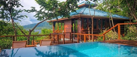 The Caribbean's Newest Treehouse Villas | Commonwealth of Dominica | Scoop.it