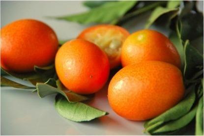 Food Testing Experts: The 12 Weirdest Looking Fruits   The weirdest fruits on the planet in one big list!   Scoop.it