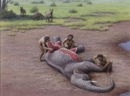 Evolución y educación (3) | Sapiens | Blogs | elmundo.es | Enseñar Geografía e Historia en Secundaria | Scoop.it