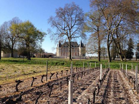 Château Lamothe-Bergeron – une visite pas comme les autres | Le Vin en Grand - Vivez en Grand ! www.vinengrand.com | Scoop.it