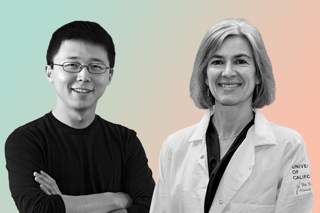 This Gene-Editing Technology Will Change the World. But Who Gets the Credit?   Future Trends and Advances In Education and Technology   Scoop.it