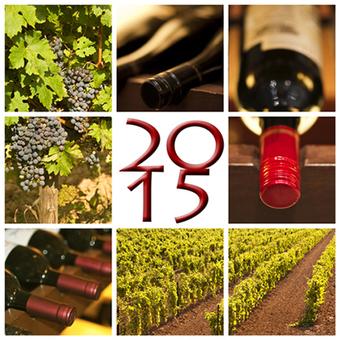 Ecco i 5 trend per un anno all'insegna dei grandi vini | The Italian Lifestyle | Scoop.it