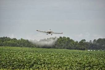 Disturbing New Evidence About What Common Pesticides Can Do to Brains | Permaculture, Horticulture, Homesteading, Bio-Remediation, & Green Tech | Scoop.it