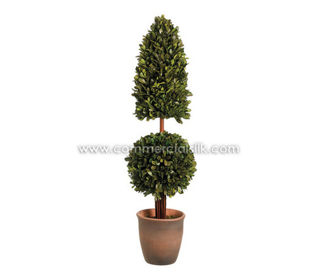 Preserved Trees | Preserved Boxwood Pyramid Ball Topiary | Artificial, Silk Trees Knowledge Center | Scoop.it