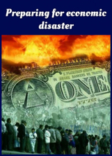 Preparing for economic disaster | Useful stuffs | Scoop.it